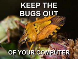 keep bugs out of computer graphic