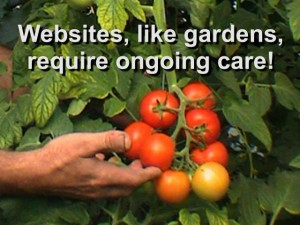websites are like gardens graphic