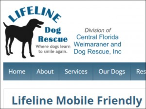 lifeline rwd mobile site screenshot